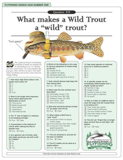Longcopy ads like this flyfishing quiz could be used by music brands