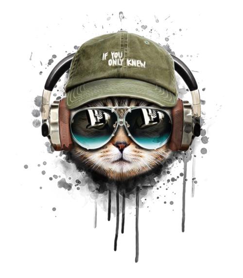 illustration of cool cat in headphones wearing cap